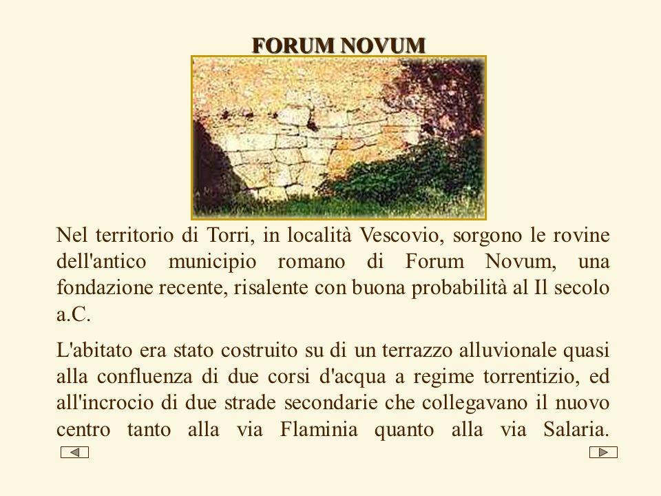 FORUM NOVUM