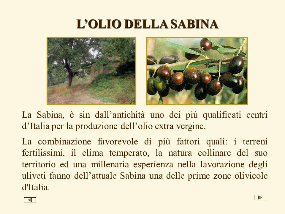 L'OLIO DELLA SABINA La Sabina, è sin dall'antichità uno dei più qualificati centri d'Italia per la produzione dell'olio extra vergine.