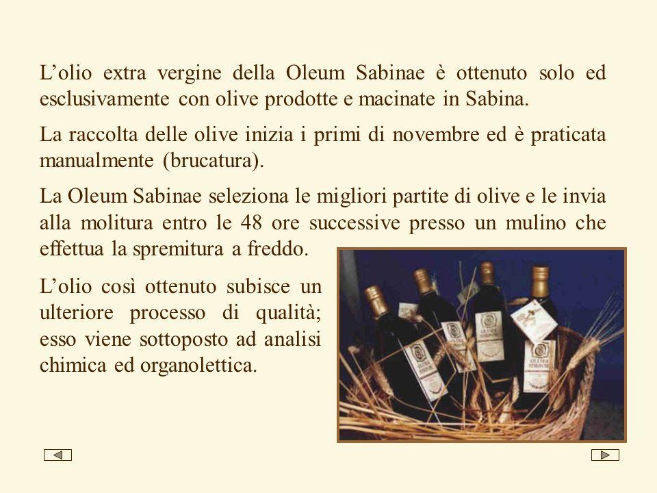 L'olio extra vergine della Oleum Sabinae è ottenuto solo ed esclusivamente con olive prodotte e macinate in Sabina.