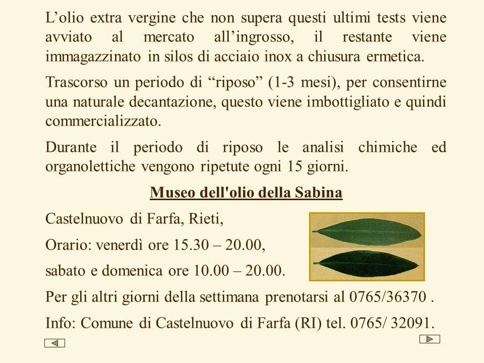 Museo dell olio della Sabina