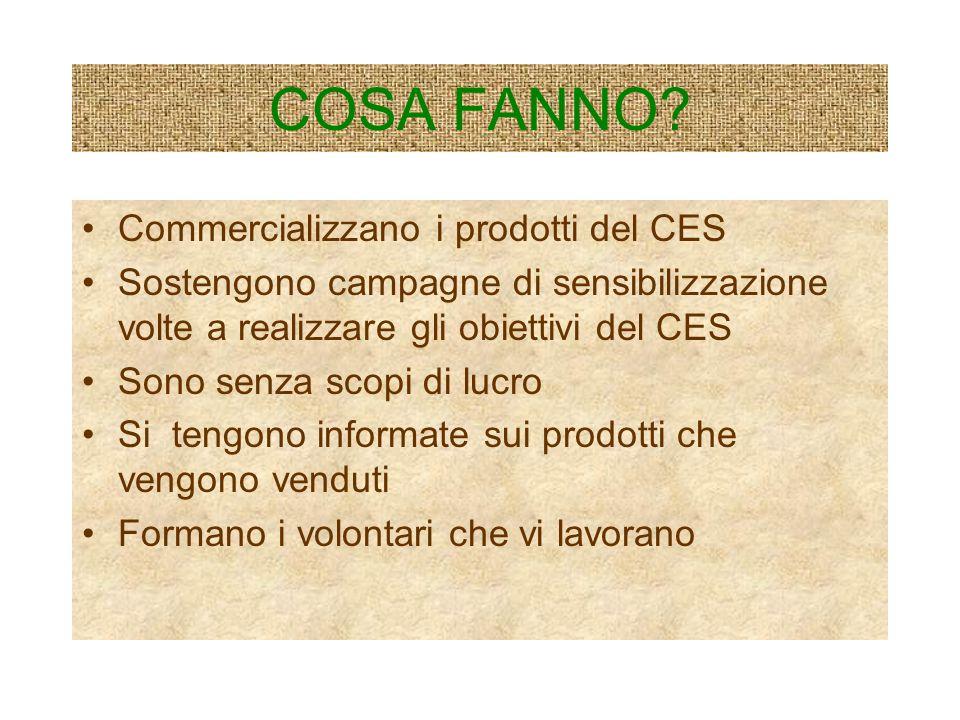 COSA FANNO Commercializzano i prodotti del CES