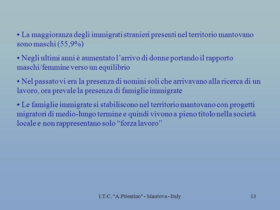 I.T.C. A.Pitentino - Mantova - Italy