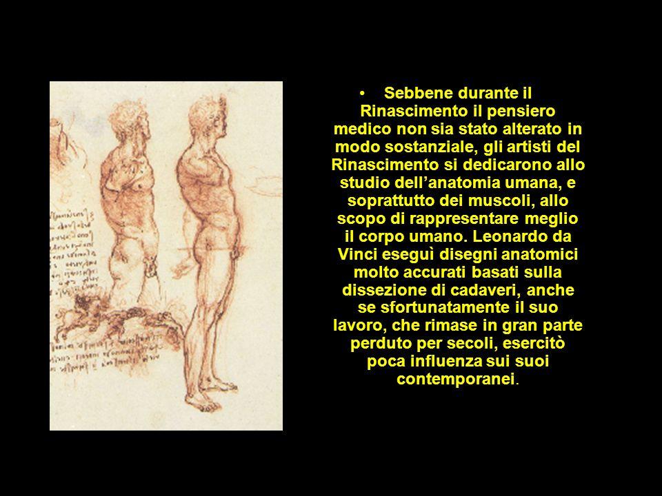 Sebbene durante il Rinascimento il pensiero medico non sia stato alterato in modo sostanziale, gli artisti del Rinascimento si dedicarono allo studio dell'anatomia umana, e soprattutto dei muscoli, allo scopo di rappresentare meglio il corpo umano.