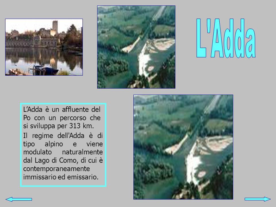 L Adda L'Adda è un affluente del Po con un percorso che si sviluppa per 313 km.