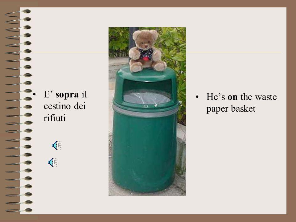 E' sopra il cestino dei rifiuti
