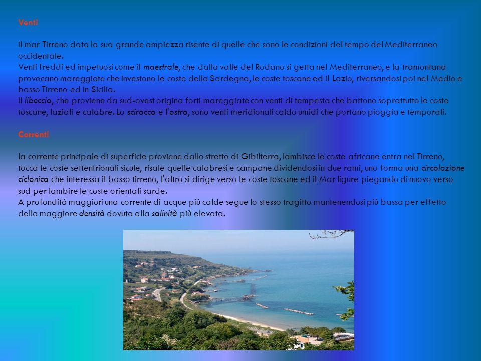 Venti il mar Tirreno data la sua grande ampiezza risente di quelle che sono le condizioni del tempo del Mediterraneo occidentale.