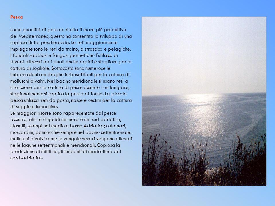 Pesca come quantità di pescato risulta il mare più produttivo del Mediterraneo, questo ha consentito lo sviluppo di una copiosa flotta peschereccia.