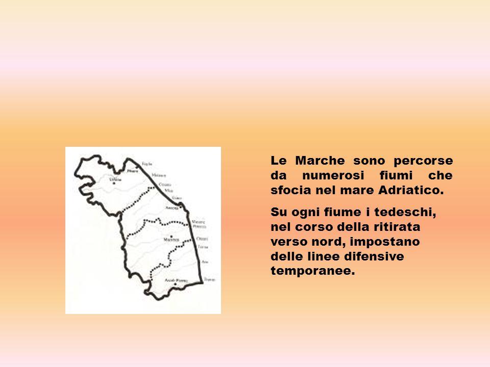 Le Marche sono percorse da numerosi fiumi che sfocia nel mare Adriatico.