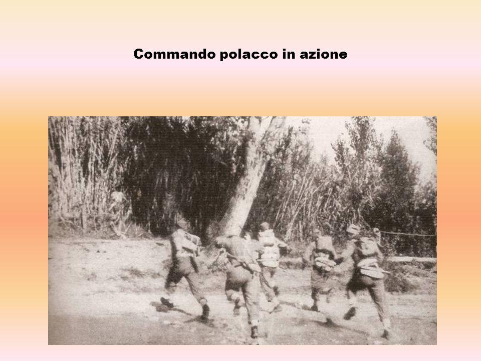 Commando polacco in azione
