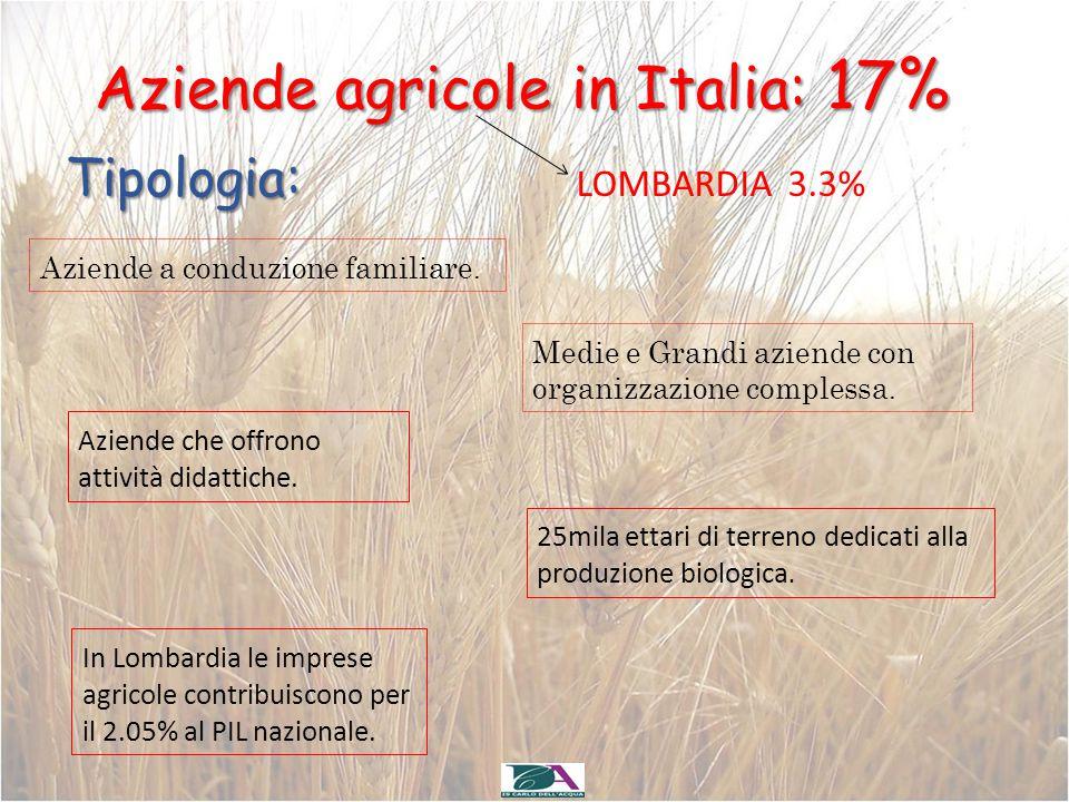 Aziende agricole in Italia: 17%