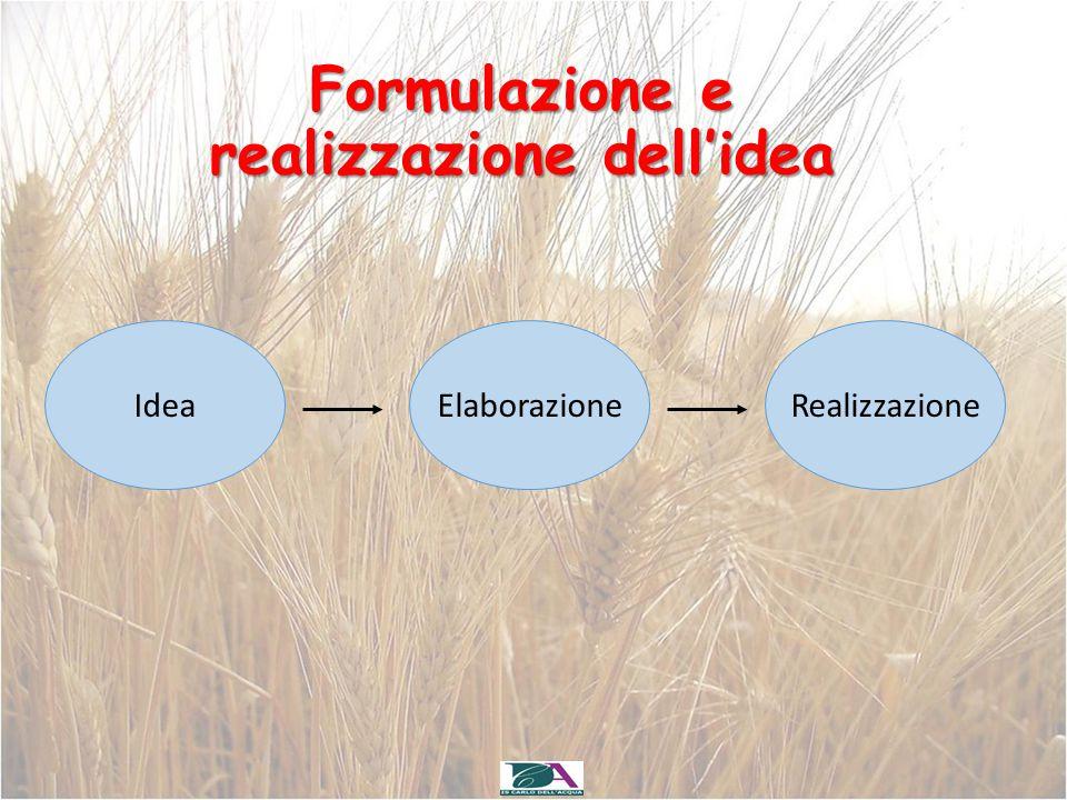 Formulazione e realizzazione dell'idea
