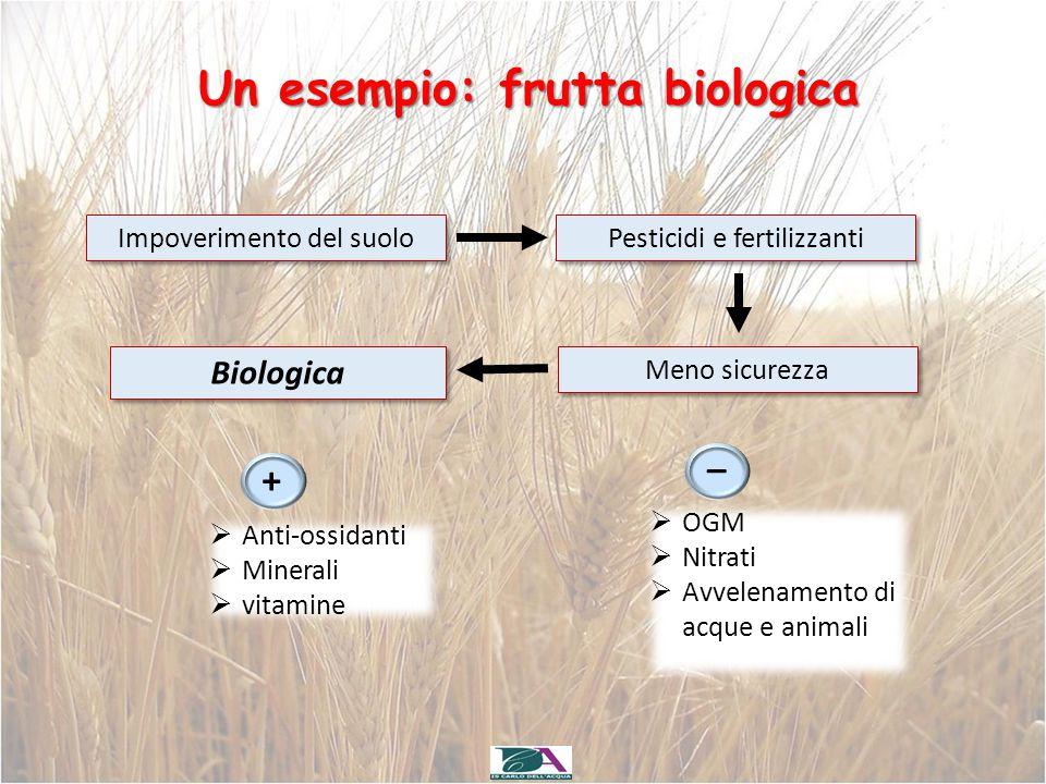 Un esempio: frutta biologica