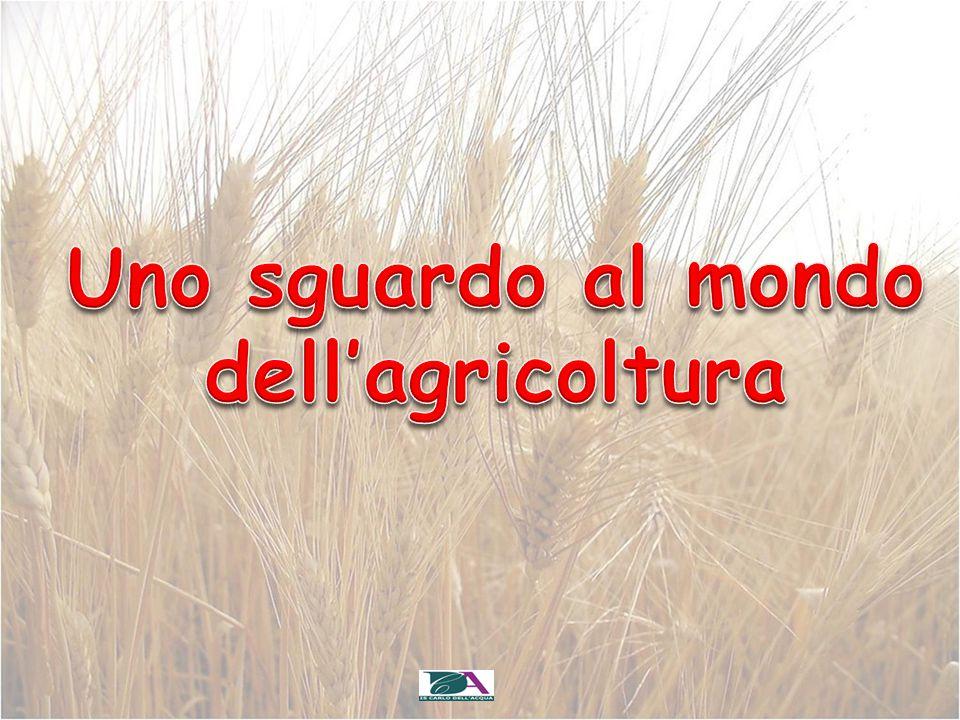Uno sguardo al mondo dell'agricoltura