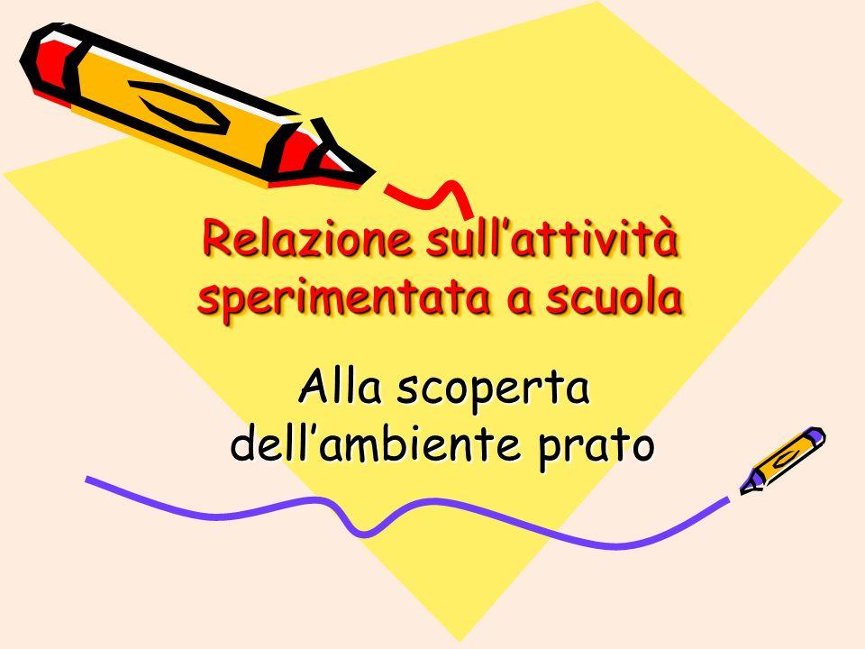 Relazione sull'attività sperimentata a scuola