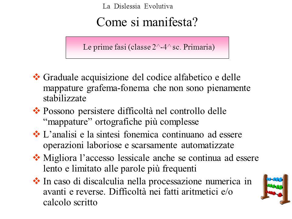 Le prime fasi (classe 2^-4^ sc. Primaria)