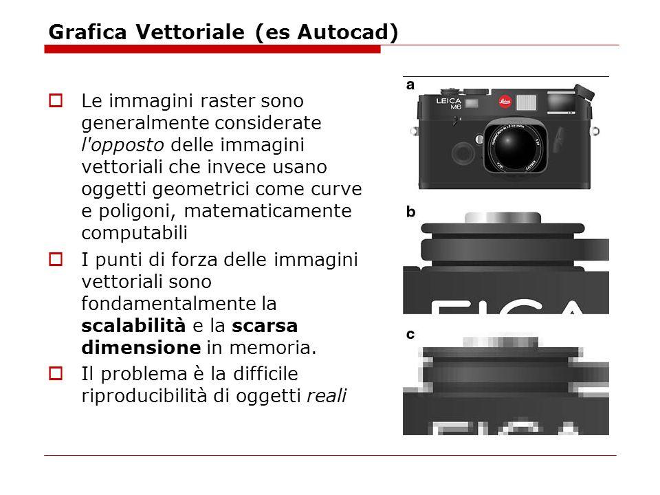 Grafica Vettoriale (es Autocad)