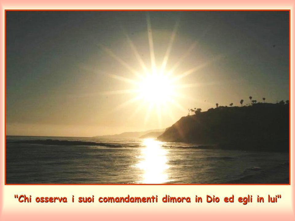 Chi osserva i suoi comandamenti dimora in Dio ed egli in lui