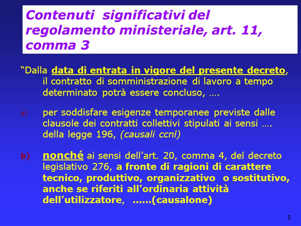 Contenuti significativi del regolamento ministeriale, art. 11, comma 3