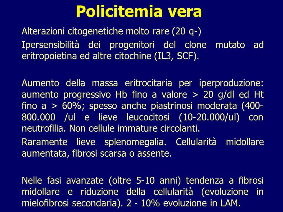 Policitemia vera Alterazioni citogenetiche molto rare (20 q-)