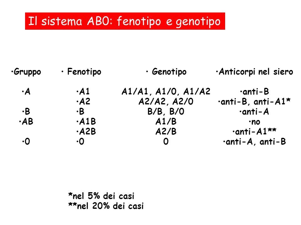 Il sistema AB0: fenotipo e genotipo