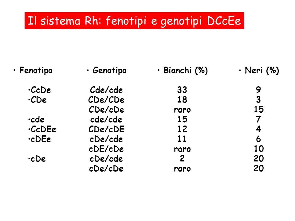 Il sistema Rh: fenotipi e genotipi DCcEe