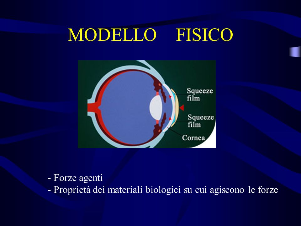 MODELLO FISICO Forze agenti