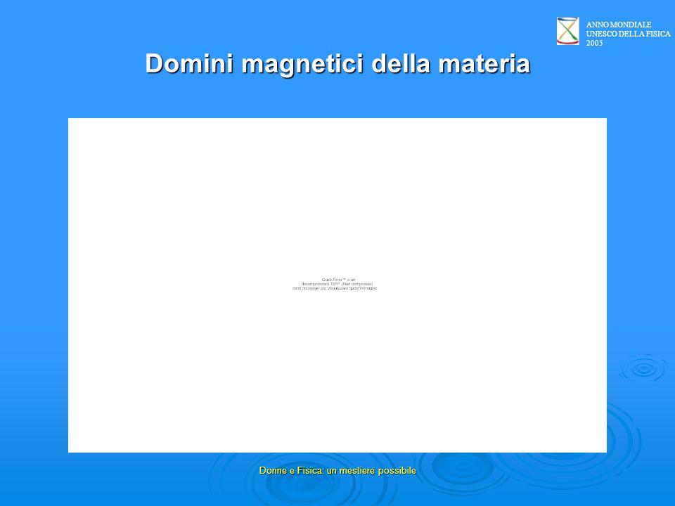 Domini magnetici della materia