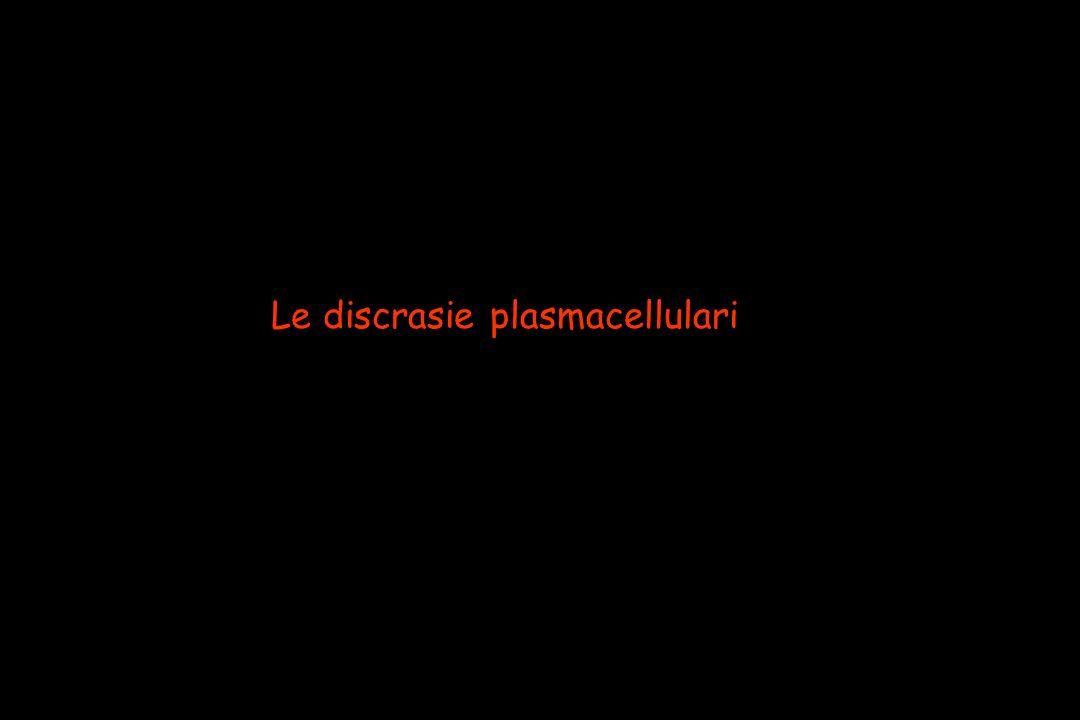 Le discrasie plasmacellulari