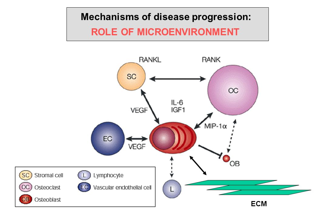 Mechanisms of disease progression: ROLE OF MICROENVIRONMENT