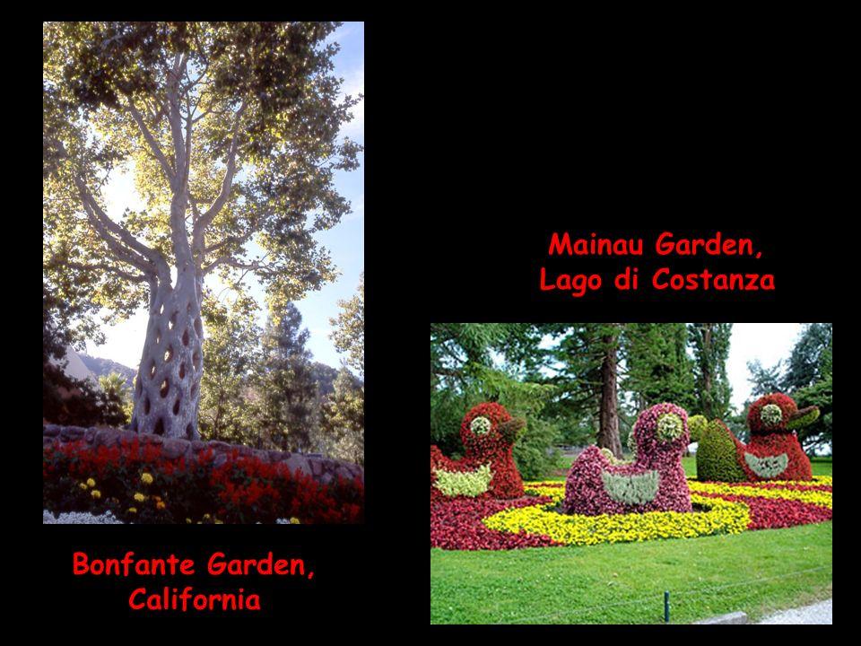 Mainau Garden, Lago di Costanza Bonfante Garden, California