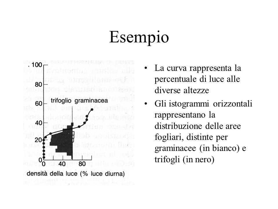 Esempio La curva rappresenta la percentuale di luce alle diverse altezze.
