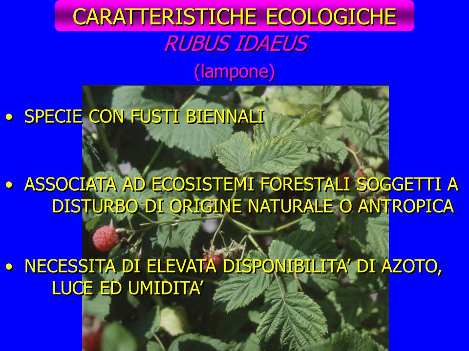 CARATTERISTICHE ECOLOGICHE
