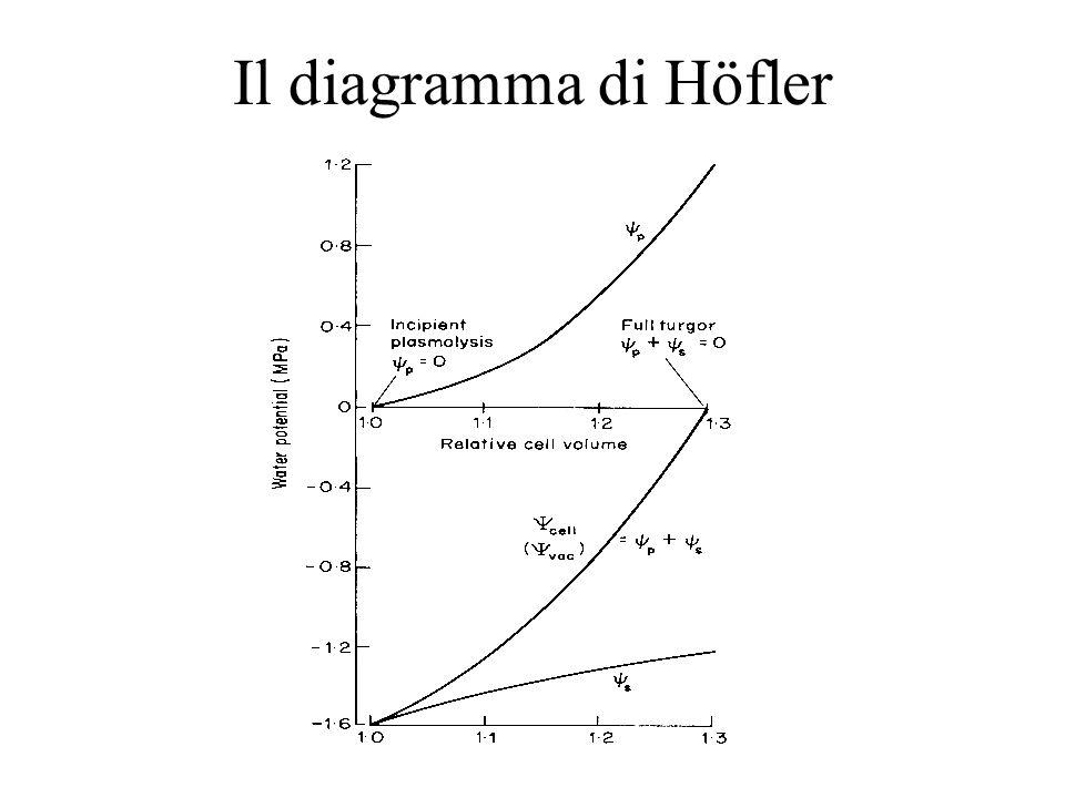 Il diagramma di Höfler