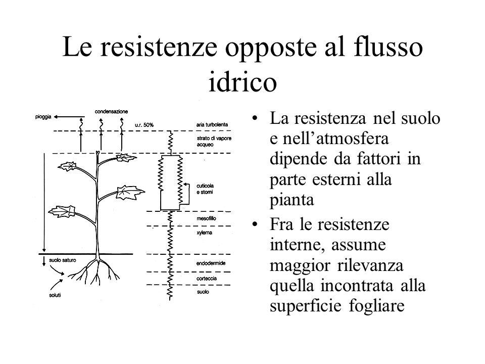 Le resistenze opposte al flusso idrico