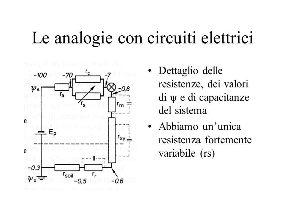 Le analogie con circuiti elettrici