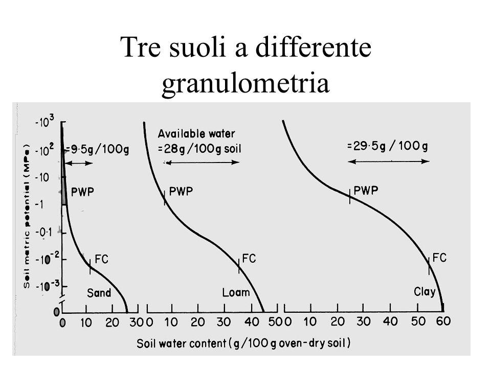 Tre suoli a differente granulometria