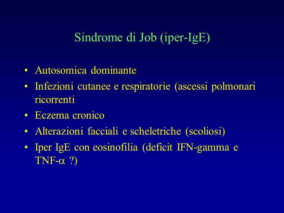 Sindrome di Job (iper-IgE)