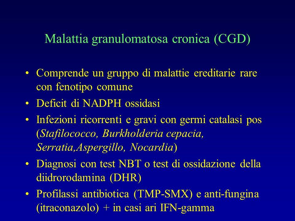 Malattia granulomatosa cronica (CGD)