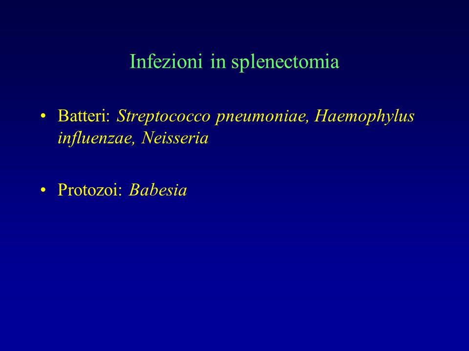Infezioni in splenectomia