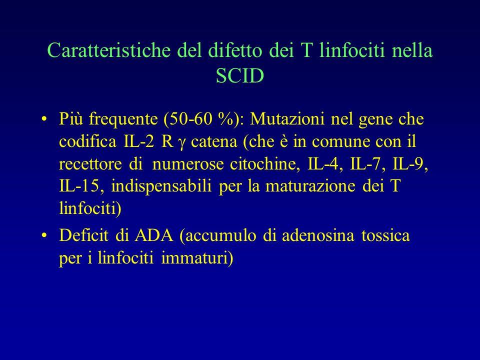 Caratteristiche del difetto dei T linfociti nella SCID