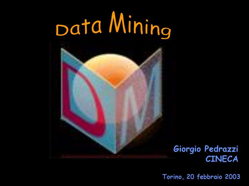 Data Mining Giorgio Pedrazzi CINECA Torino, 20 febbraio 2003