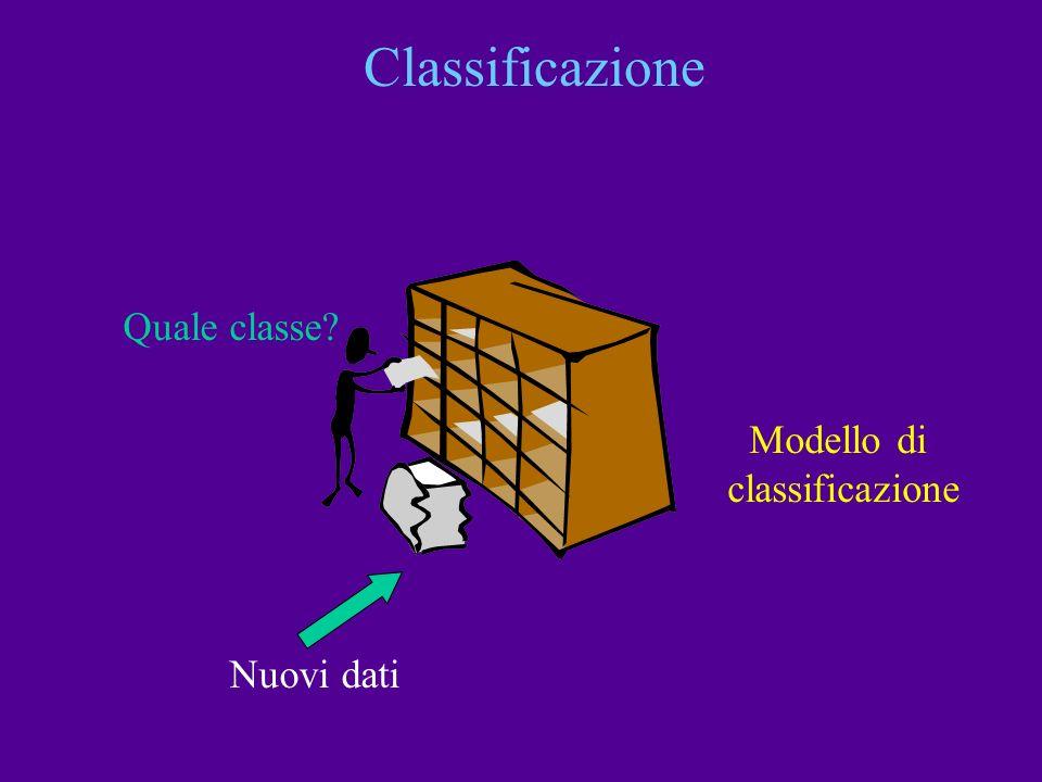 Classificazione Quale classe Modello di classificazione Nuovi dati