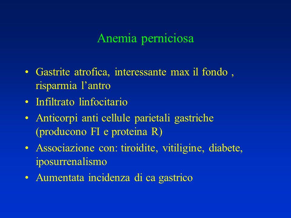 Anemia perniciosa Gastrite atrofica, interessante max il fondo , risparmia l'antro. Infiltrato linfocitario.
