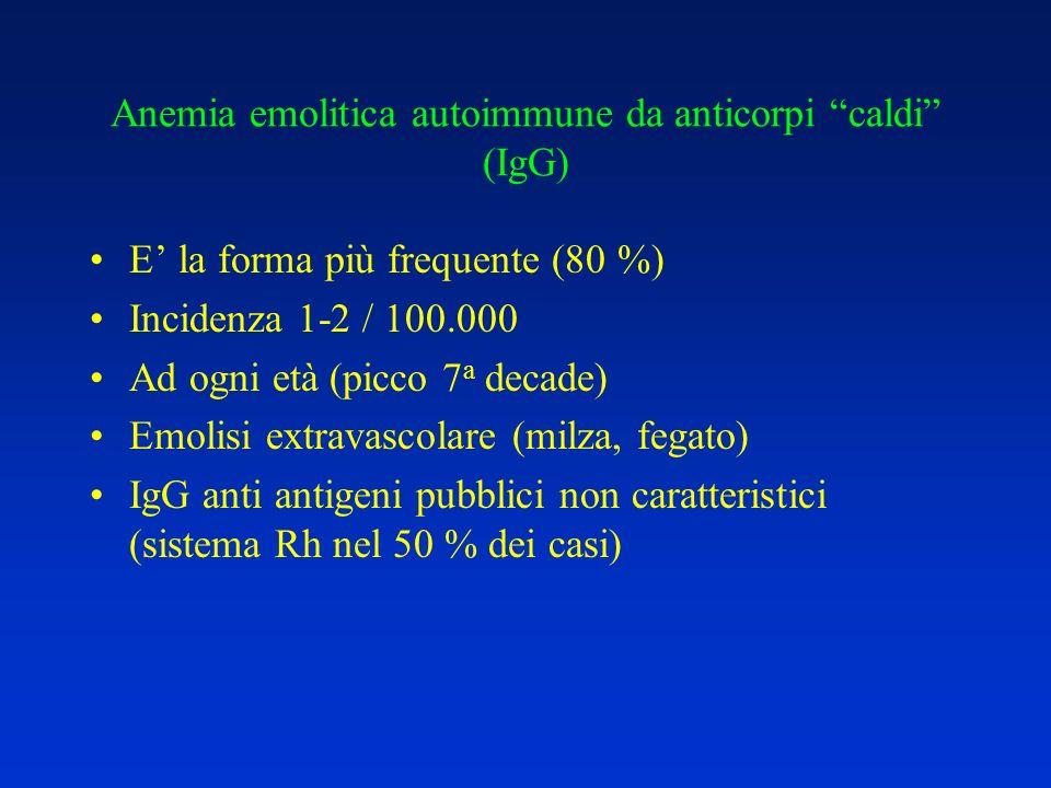 Anemia emolitica autoimmune da anticorpi caldi (IgG)