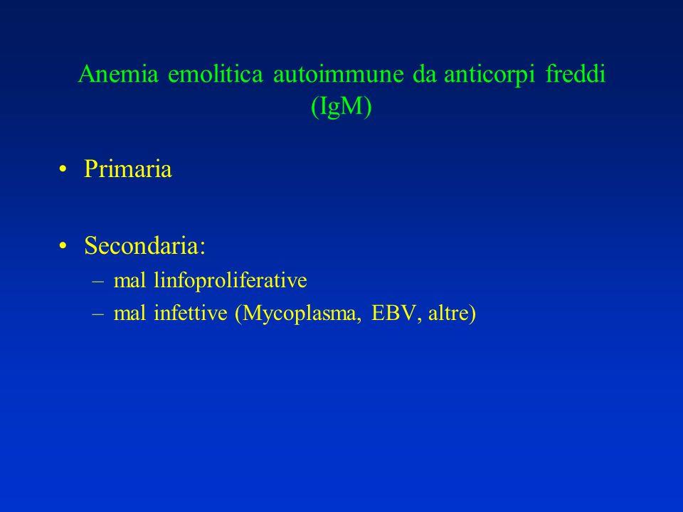 Anemia emolitica autoimmune da anticorpi freddi (IgM)
