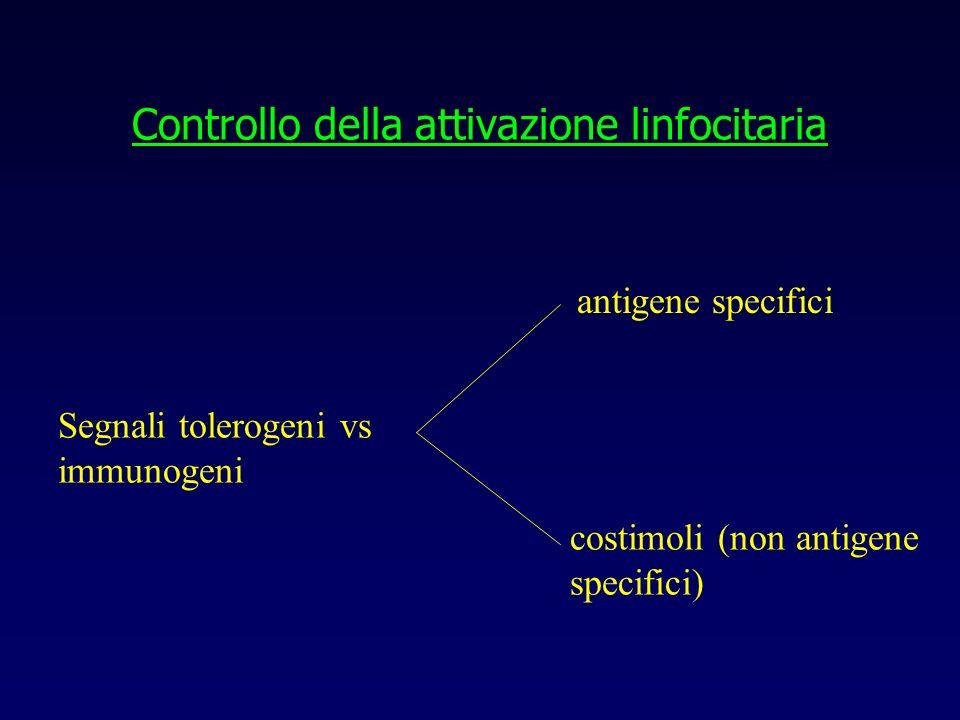 Controllo della attivazione linfocitaria