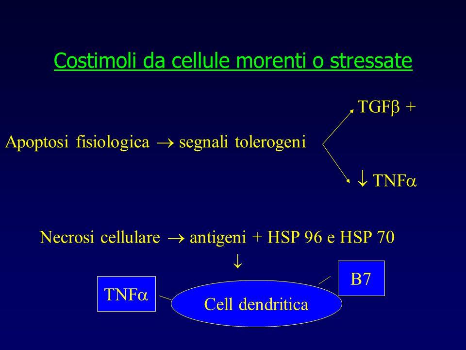 Costimoli da cellule morenti o stressate