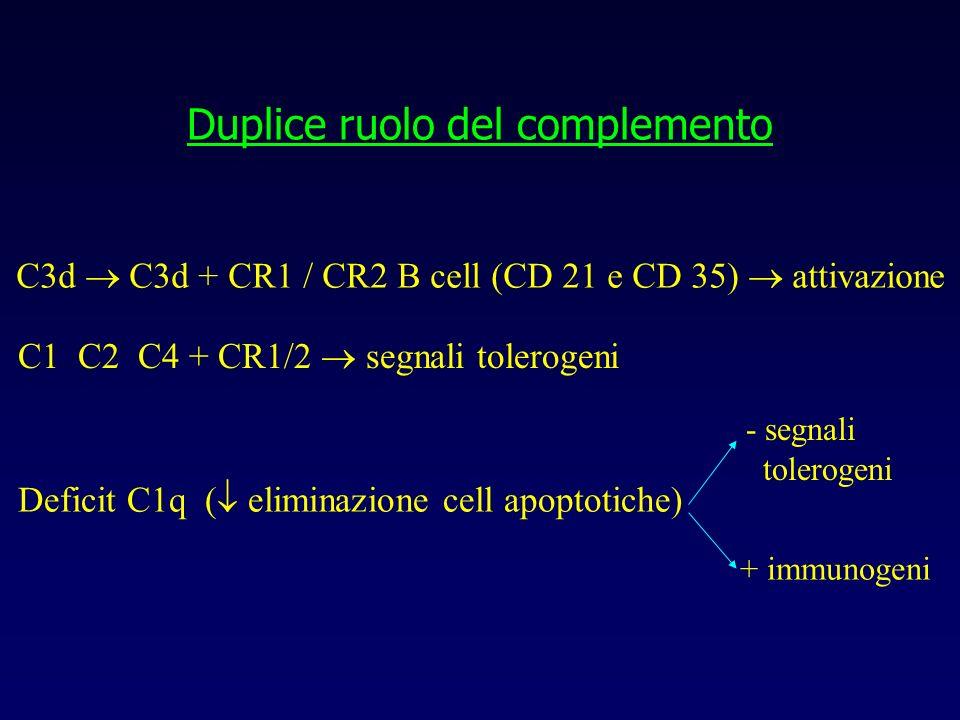 Duplice ruolo del complemento