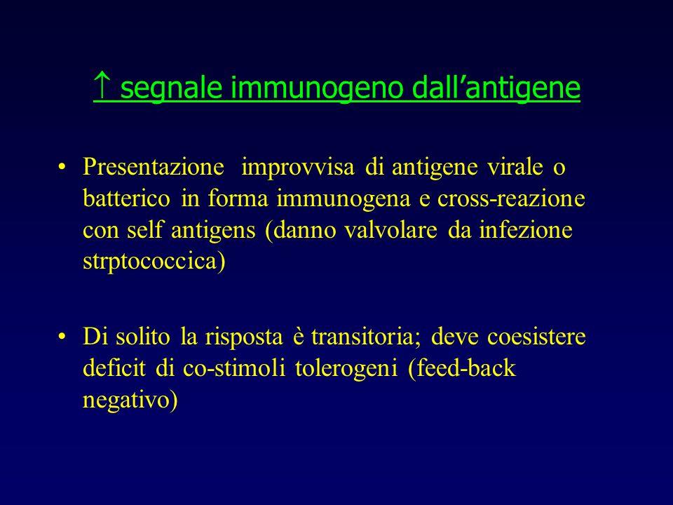  segnale immunogeno dall'antigene