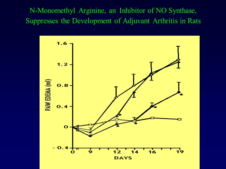 N-Monomethyl Arginine, an Inhibitor of NO Synthase, Suppresses the Development of Adjuvant Arthritis in Rats